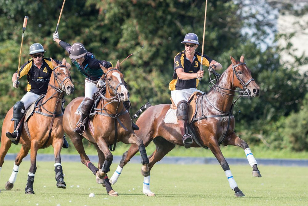 Dorset Polo Team Chukka