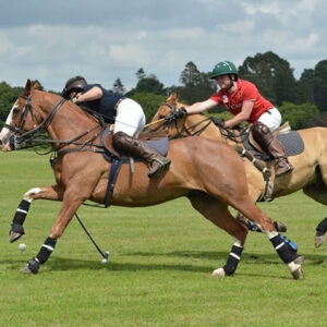 good-action-small-polo-best